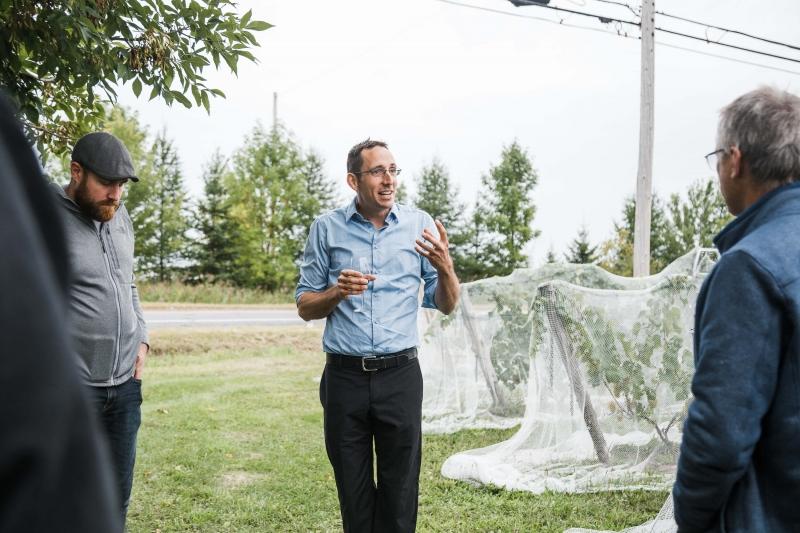 Vins du Québec | Louis Thomas du Vignoble Domaine du Fleuve