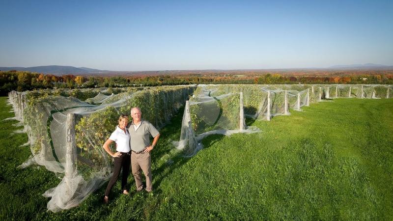 Vins du Québec | Léon Courville et Anne-Marie Lemire du Domaine Les Brome