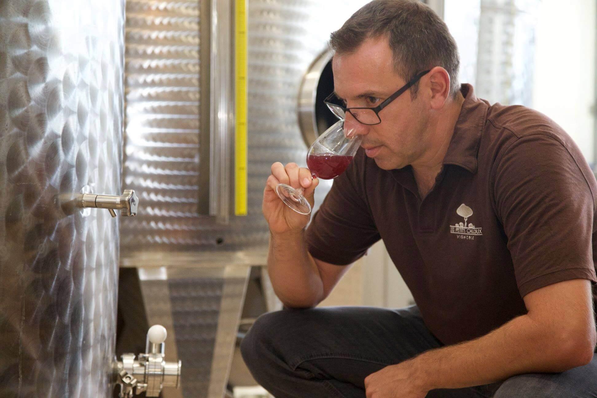 Vins du Québec | Martin Lavertu du Vignoble Les Petits Cailloux